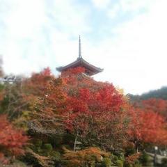 20121120京都.jpg